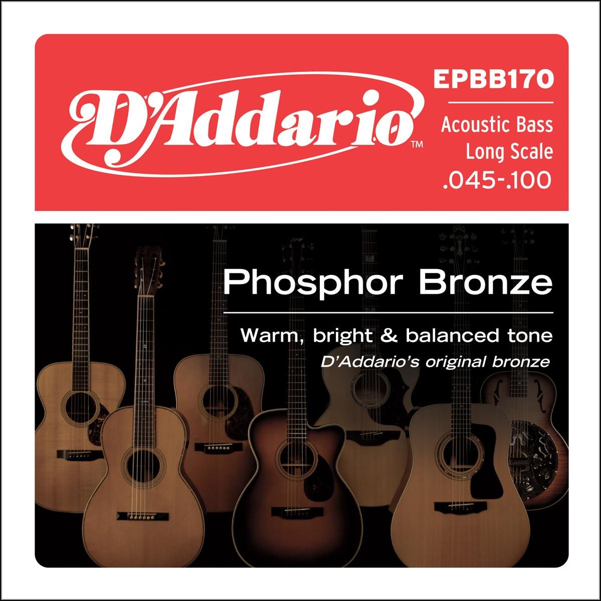DADDARIO EPBB170 PHOSPHOR BRONZE ACOUSTIC BASS, LONG SCALE [45-100]