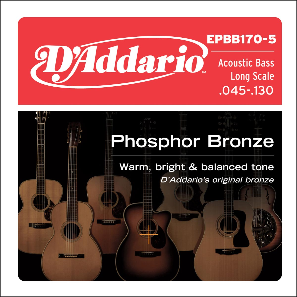 DADDARIO EPBB170-5 PHOSPHOR BRONZE 5-STRING LONG SCALE, [45-130]